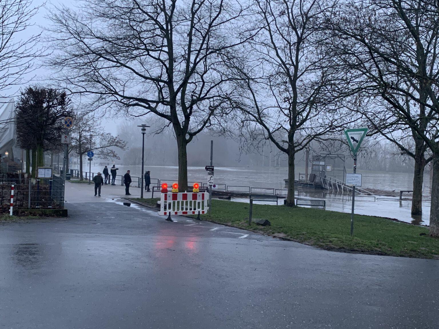 Hoichwasser am Rhein